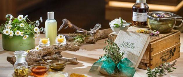 Heilpflanzen und Naturkosmetik Workshops
